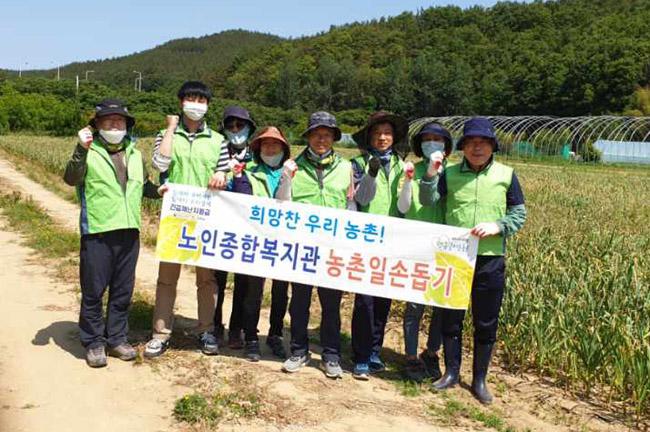노인종합복지관,  마늘재배농가 농촌 일손돕기